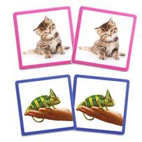 Maxi-memory mascotas Memoria
