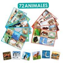 Loto 72 animales PICTOGRAMAS e IMAGENES