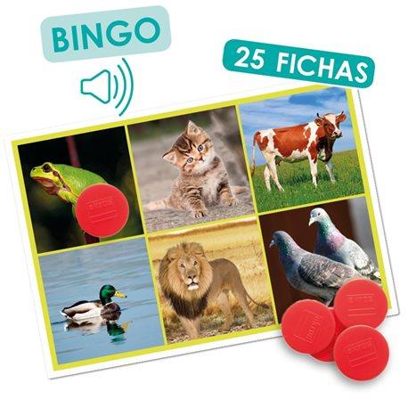 Bingo los animales y la naturaleza Percepción y Gnosias